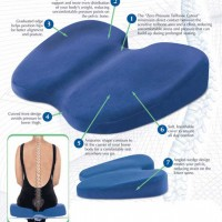 Freedom Back Support Cushion